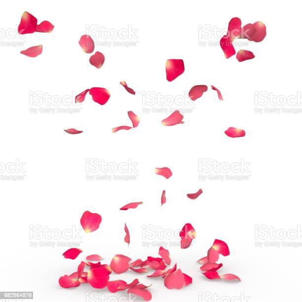 Rose petals fall to the floor picture id682964876?b=1&k=6&m=682964876&s=612x612&h=6mvcrstdziniaqgicol h5v nuc h8ternjwqlpn900=