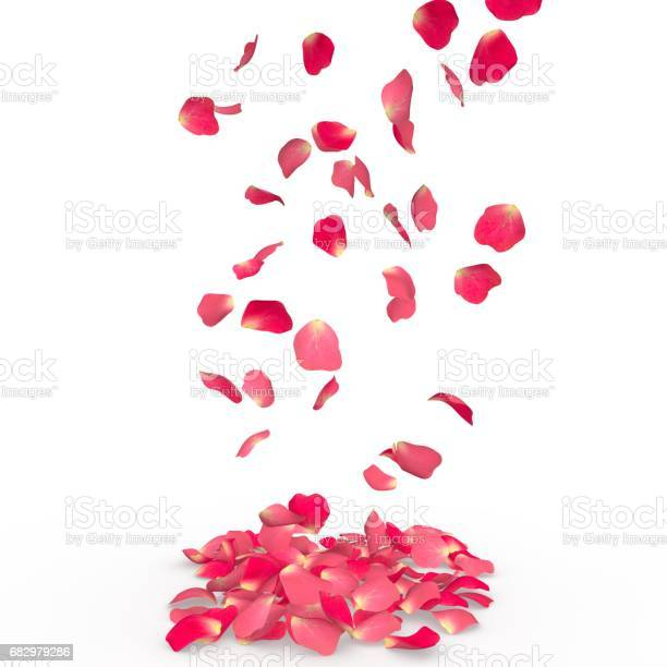 Rose petals fall to the floor picture id682979286?b=1&k=6&m=682979286&s=612x612&h=cup9y5dhg3sy41nxczrehdskqjdibqmvzabwjk7rrjq=