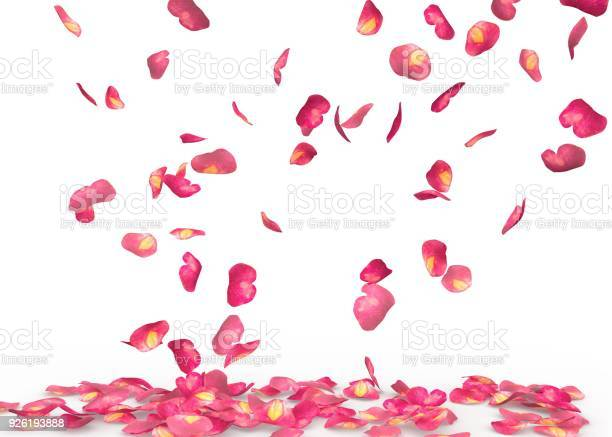 Rose petals fall to the floor picture id926193888?b=1&k=6&m=926193888&s=612x612&h=gnjh2fihtuwmdvnvobrfxi4m2pc6nxn8nbljxx1z8cm=