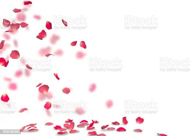 Rose petals fall to the floor picture id926265350?b=1&k=6&m=926265350&s=612x612&h=tfpsddclhrovn2l9gikqxhcbnx1lfo3 zwdjxfaeswa=