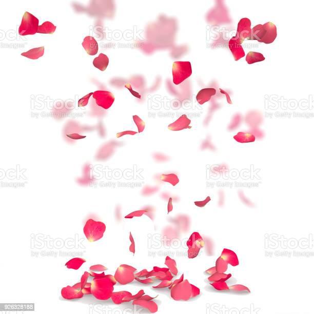 Rose petals fall to the floor picture id926328188?b=1&k=6&m=926328188&s=612x612&h=5btzxrb98cdispdocd90yr6g21nip yumggwvy66sga=
