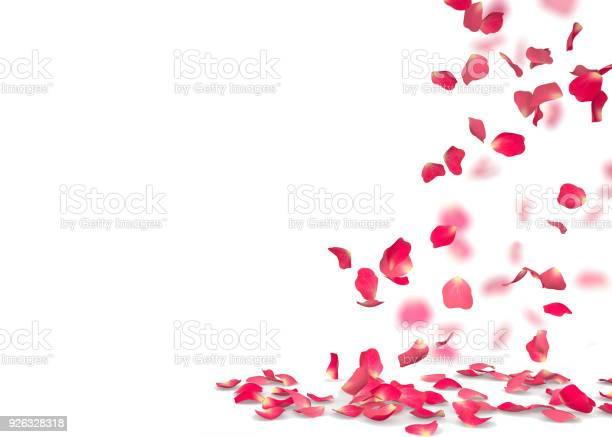 Rose petals fall to the floor picture id926328318?b=1&k=6&m=926328318&s=612x612&h=raoagmnkjdrjwfjtsykhe9lvnuzcstem7jzbtledftu=
