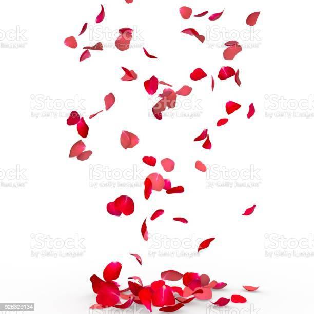 Rose petals fall to the floor picture id926329134?b=1&k=6&m=926329134&s=612x612&h=3fst6p7w9kyp35alc0p3wporlckp8ebf7rrofzgj gi=