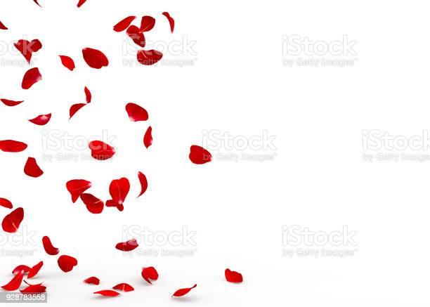 Rose petals fall to the floor picture id928783558?b=1&k=6&m=928783558&s=612x612&h=kvain79qjyyq8yq6l16iq5xeikr4m mpckbbtdzjj70=