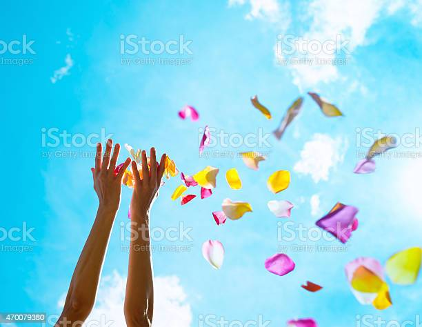 Rose petals falling from woman hands picture id470079380?b=1&k=6&m=470079380&s=612x612&h=6dirn6zdagnx 1os9a3uwyhu7lbf0pkulecv94dmpes=