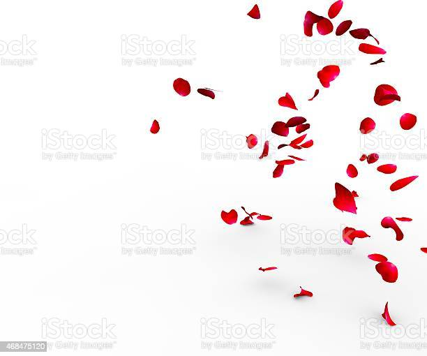 Rose petals falling on a surface picture id468475120?b=1&k=6&m=468475120&s=612x612&h=cidve3w8hnowsw2i235sel38r v58pbb cfwcl91c k=