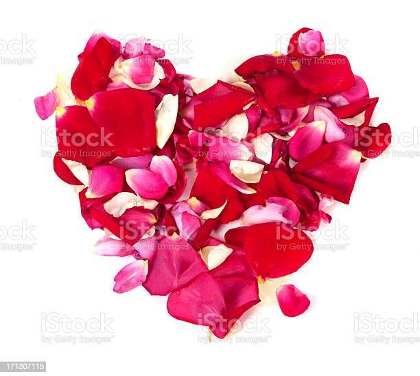 Rose petals heart picture id171307115?b=1&k=6&m=171307115&s=612x612&h=zu2wpasqfr8ypky2cqxcmcec2a9efpv0igewzms6nqw=