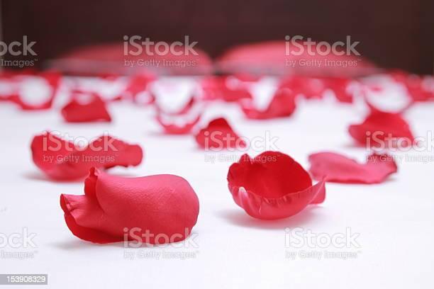 Rose petals on a bed with white sheets picture id153908329?b=1&k=6&m=153908329&s=612x612&h=ery pzynvpmwovrdawqcvwxfqjuo7 jlegb18rj rvo=