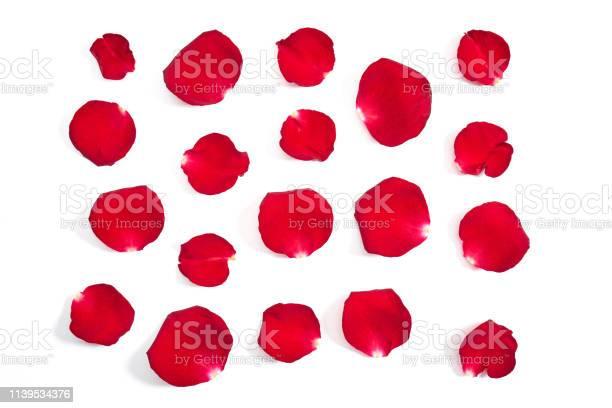 Rose petals picture id1139534376?b=1&k=6&m=1139534376&s=612x612&h=okx0kftz lnjspe ujasxys2rk1dan9yd 3vmpdw1d8=