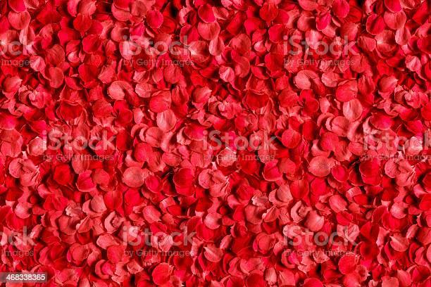 Rose petals picture id468338365?b=1&k=6&m=468338365&s=612x612&h=dk6twrdoq9rxtajfctl3g0cfi hmaxjwu3k3b1fi2wy=