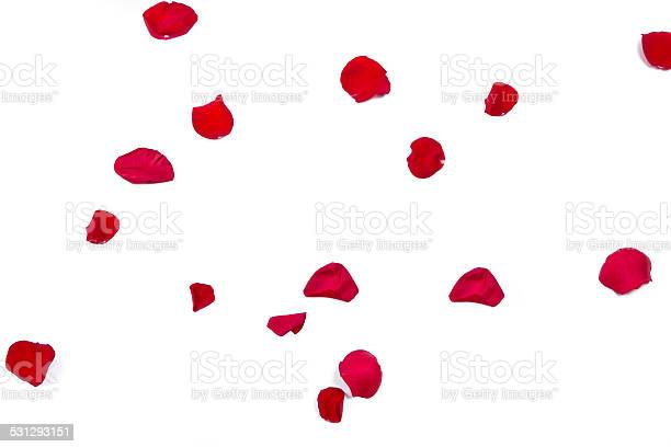 Rose petals picture id531293151?b=1&k=6&m=531293151&s=612x612&h=hruomg7dhq rpdvcu3d j9cqt phj2f1twtgwbrwj8g=