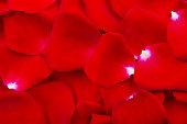 istock Rose petals 984173144