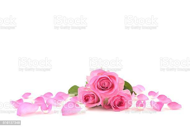 Rose picture id516137348?b=1&k=6&m=516137348&s=612x612&h=cvwx3c4hbajsnvr04jixenxllehirvldvcrhtfypdkm=