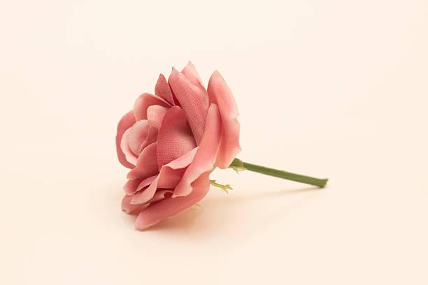 Rose side view picture id484078603?b=1&k=6&m=484078603&s=612x612&w=0&h=v4bw1yvhhv2xfkmaa mfxr0d5ozylpdppfqlv3v7cig=