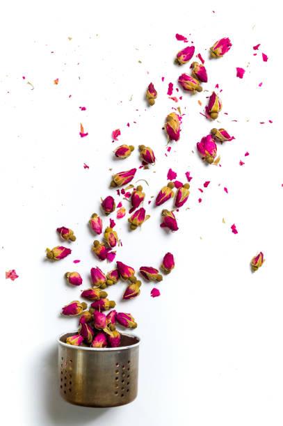 rose tee-blumen herausfliegen wasserkocher sieb auf weiß - rosen tee stock-fotos und bilder