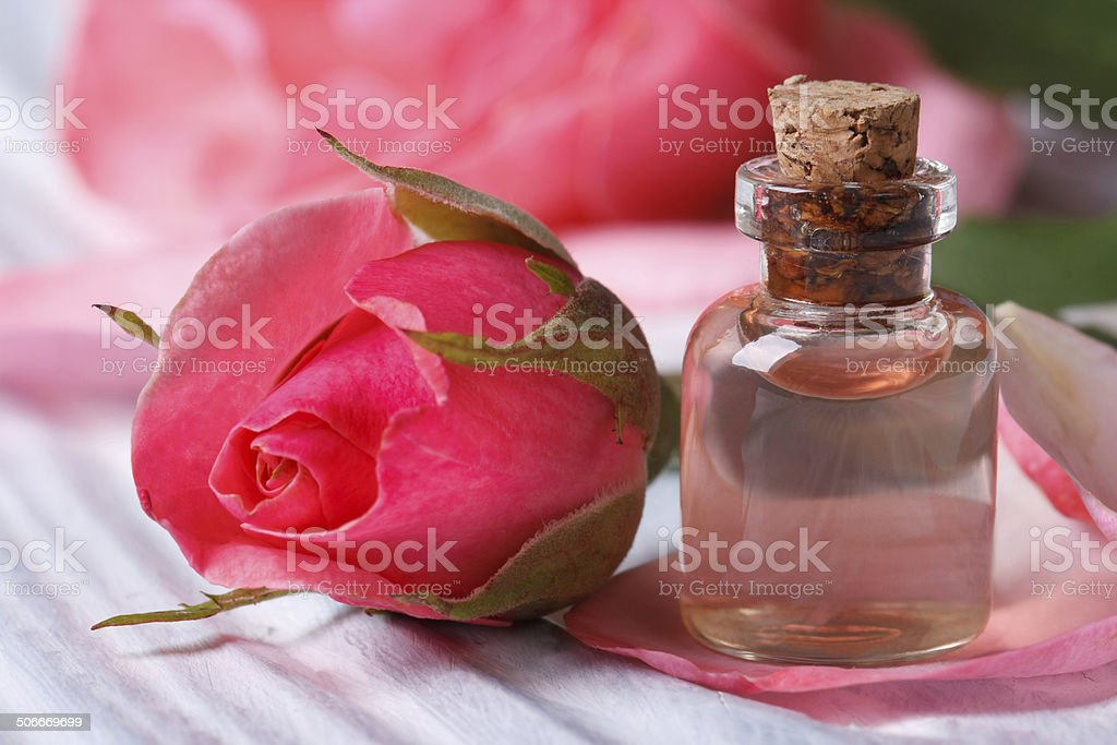 Rose water and pink beautiful flower macro horizontal stock photo
