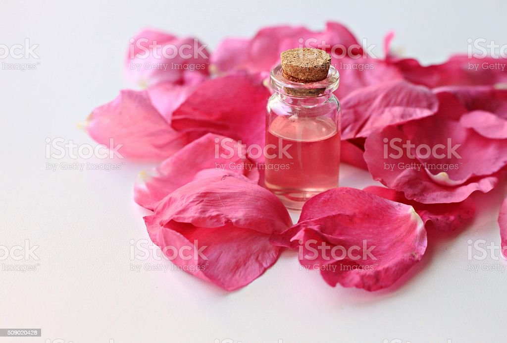 Rose water stock photo