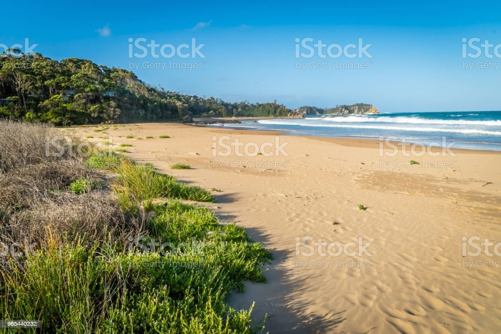 Rosedale beach in Batemans bay in New South Wales, Australia zbiór zdjęć royalty-free
