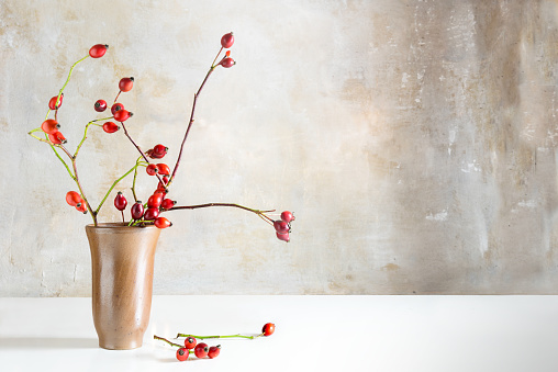 Rosehip branches in a stoneware vase on a white table in front of a vintage wall, natural beautiful autumn decoration with copy space