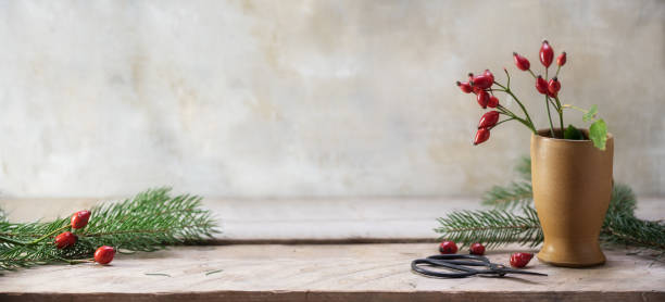 rosehips and fir branches in a stoneware vase and on a rustic wooden table to arrange christmas decoration, vintage background with copy space, panoramic banner format - christmas table imagens e fotografias de stock