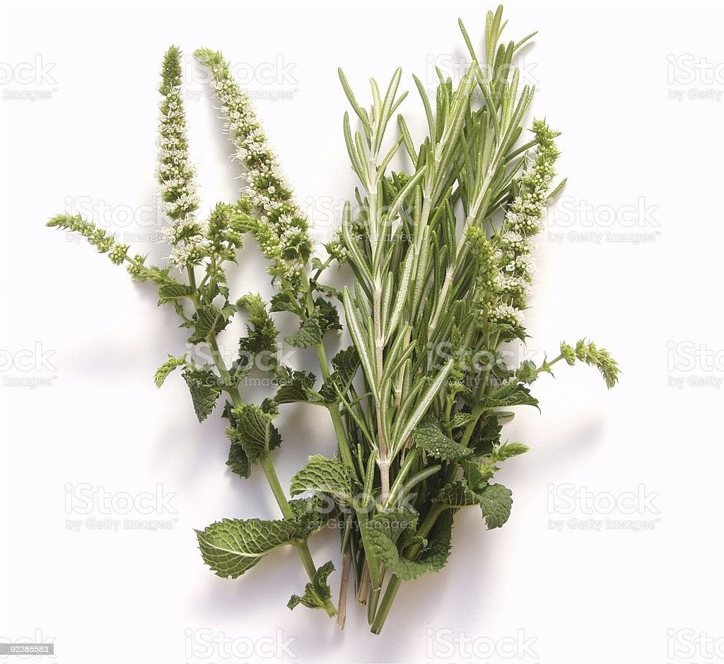 Rosemary and mint flowers royalty-free stock photo
