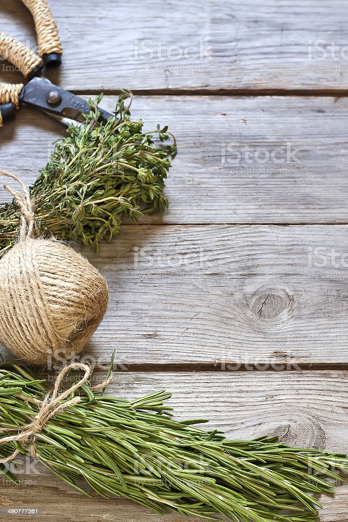 Rosemary and thyme background stock photo