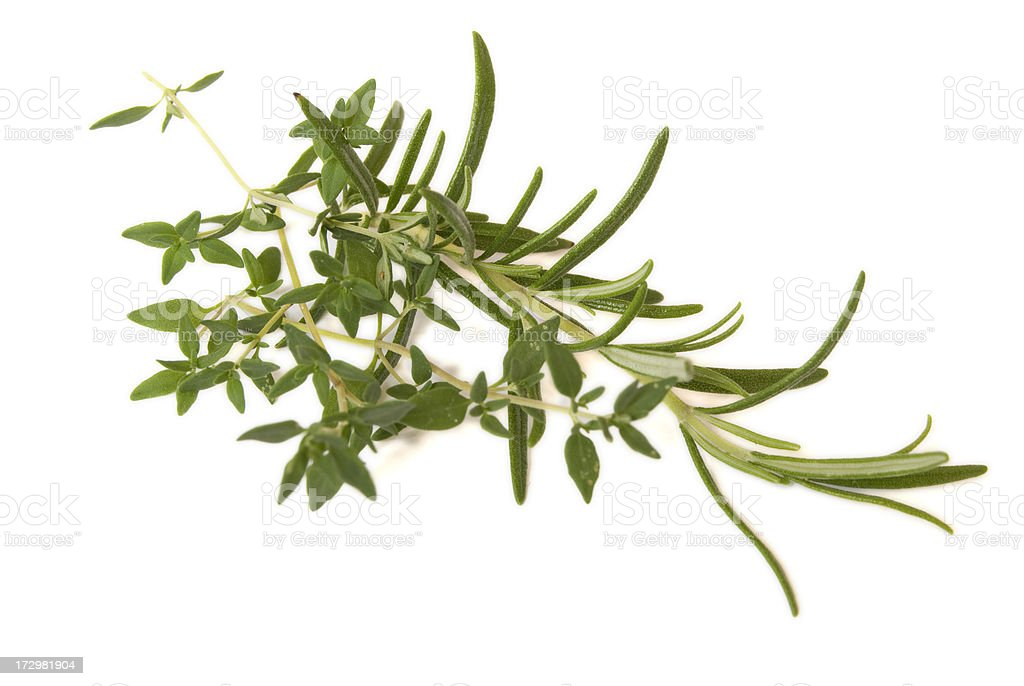 Rosemary and Thyme royalty-free stock photo