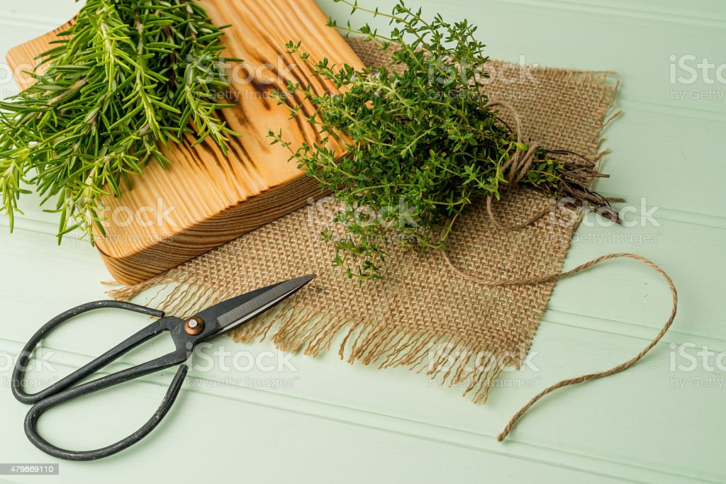 Rosemary and thyme stock photo