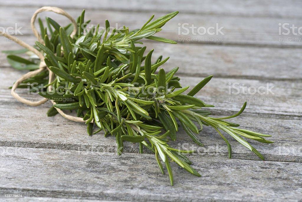Rosemary bound royalty-free stock photo