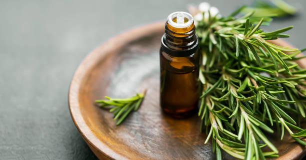 rosemary etherische olie fles met rozemarijn kruid bos op houten plaat, aromatherapie kruidenolie - rozemarijn stockfoto's en -beelden