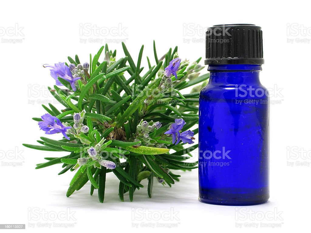 Rosemary herb & Oil royalty-free stock photo