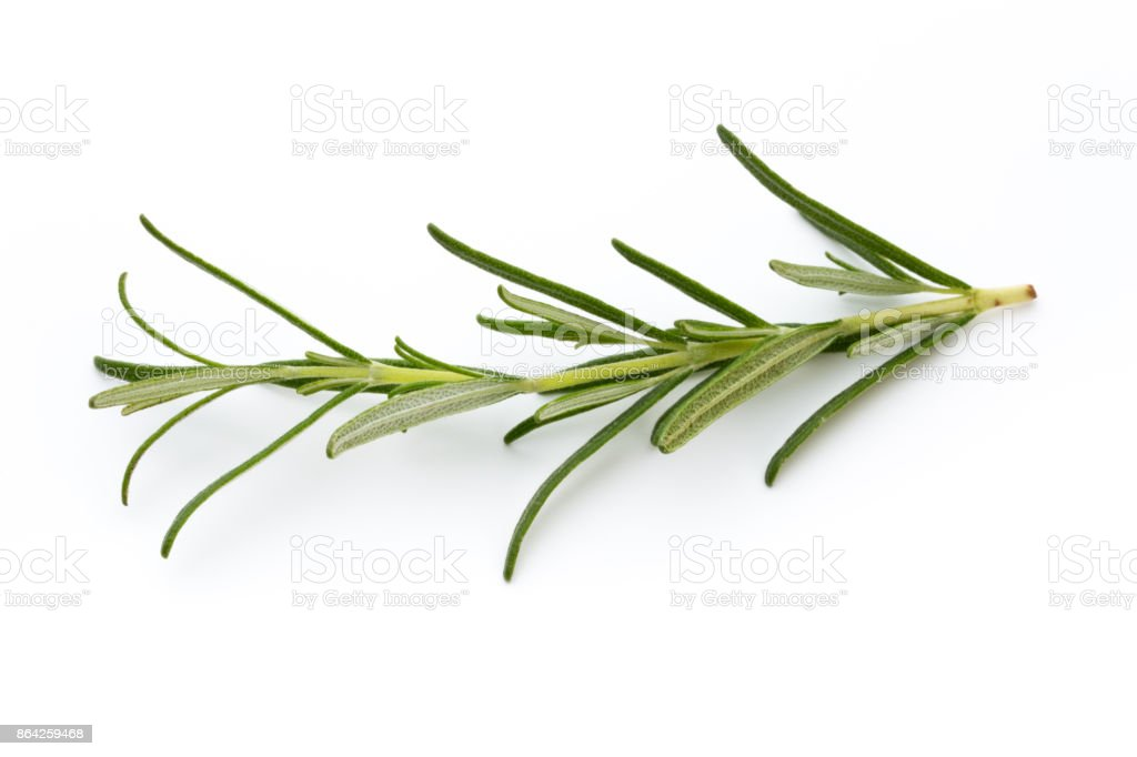Rosemary isolated on white background, Top view. royalty-free stock photo