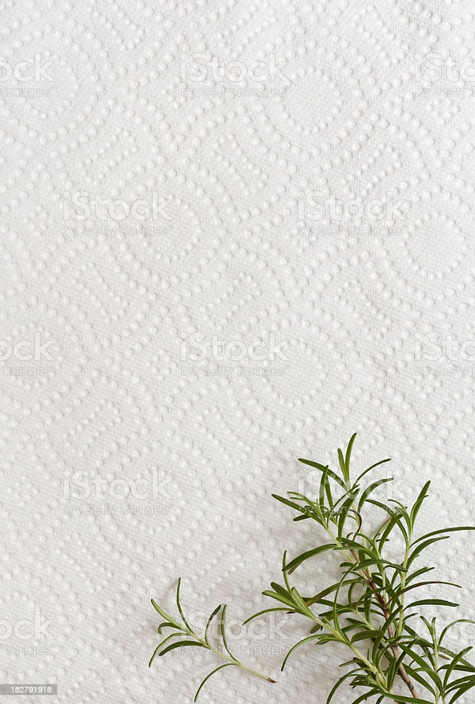 Rosemary on a Paper Towel Background stock photo