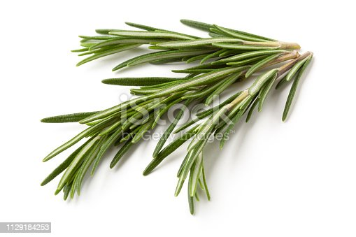 Rosemary twig  photographed on white