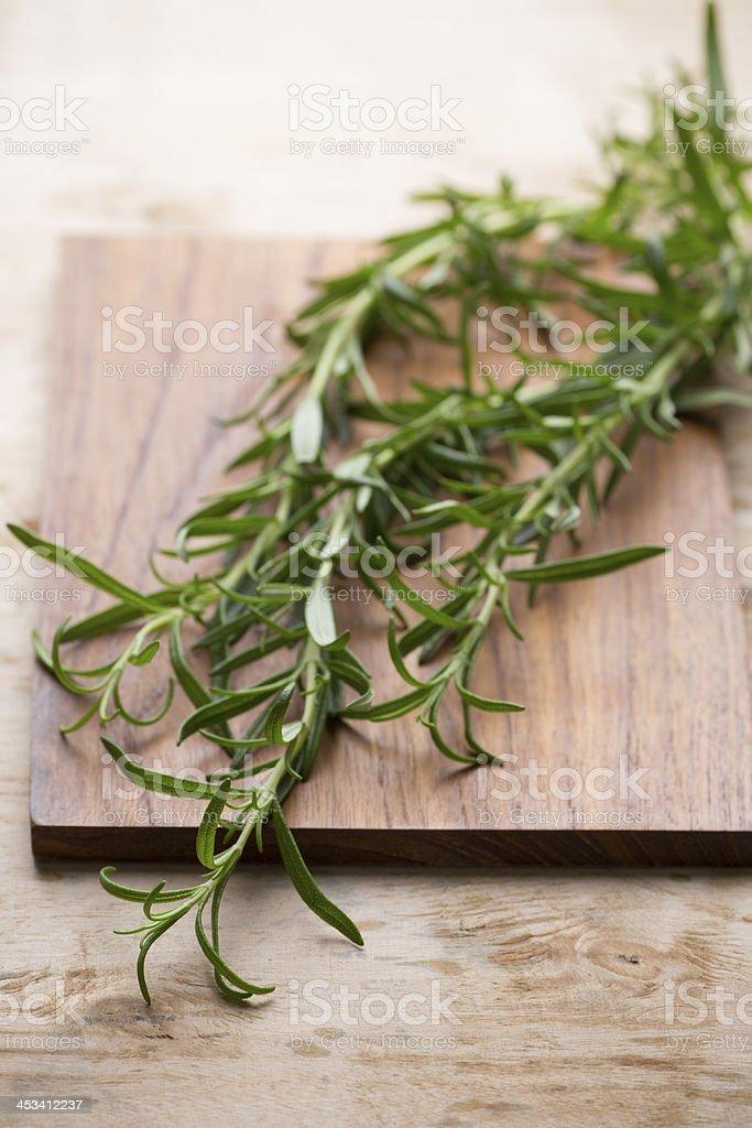 Rosemary. stock photo