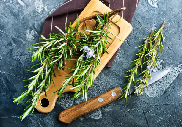 rosemary fresh rosemary, herb on the wooden table rosmarino stock pictures, royalty-free photos & images