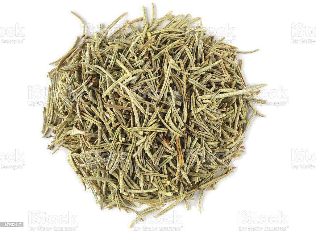 Rosemary spice royalty-free stock photo