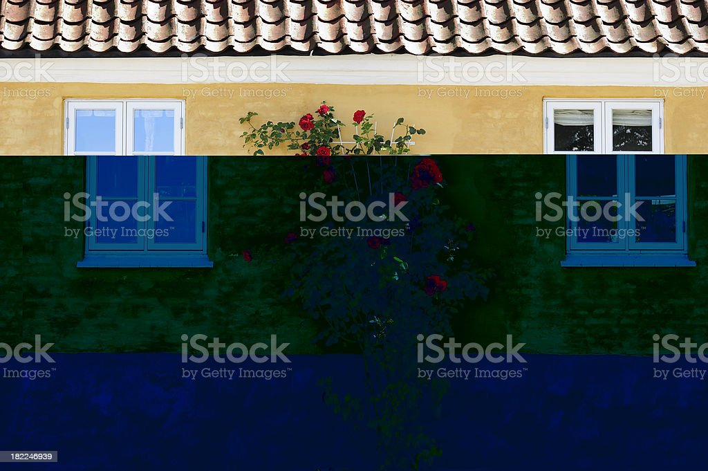 Roses against old classic facade royalty-free stock photo