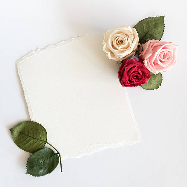 Roses and card on white background picture id531178726?b=1&k=6&m=531178726&s=612x612&w=0&h=gr7up6t2vet4nye66uwjexucj1awj3fjl1w0jydz2xo=