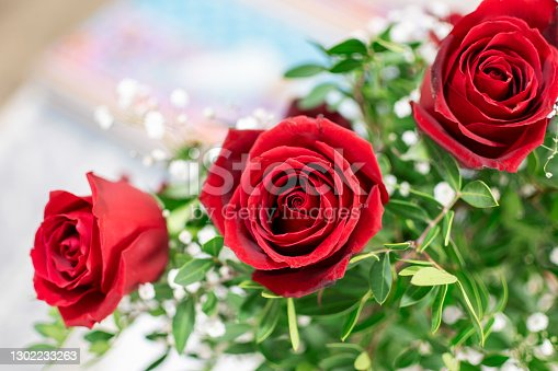 Roses and flowers for valentine's day