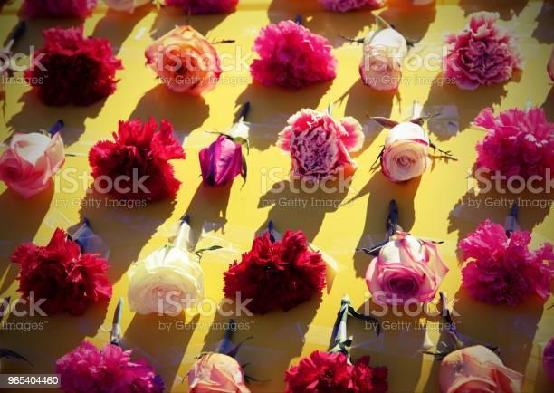 Foto de Rosas E Outras Flores Sobre Fundo Amarelo e mais fotos de stock de Crisântemo - Família da Margarida-dos-Campos