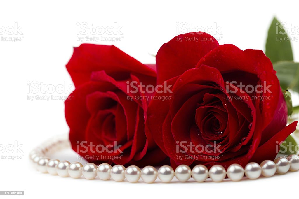 roses and pearls royalty-free stock photo