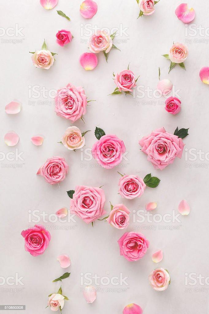 Fondo de pétalos de rosas y - foto de stock