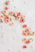 istock Roses and petals scattered on textured background, overhead view 1126741381