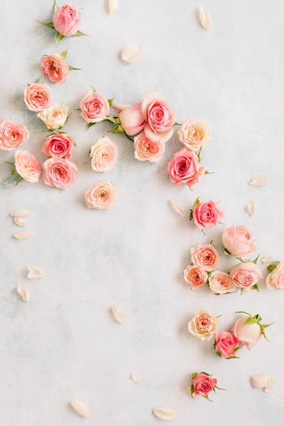 Roses and petals scattered on textured background overhead view picture id1126741381?b=1&k=6&m=1126741381&s=612x612&w=0&h=s3t2zlzy9s9lzbtsx9jz1n8x5n0kak h58l8g2rvaba=