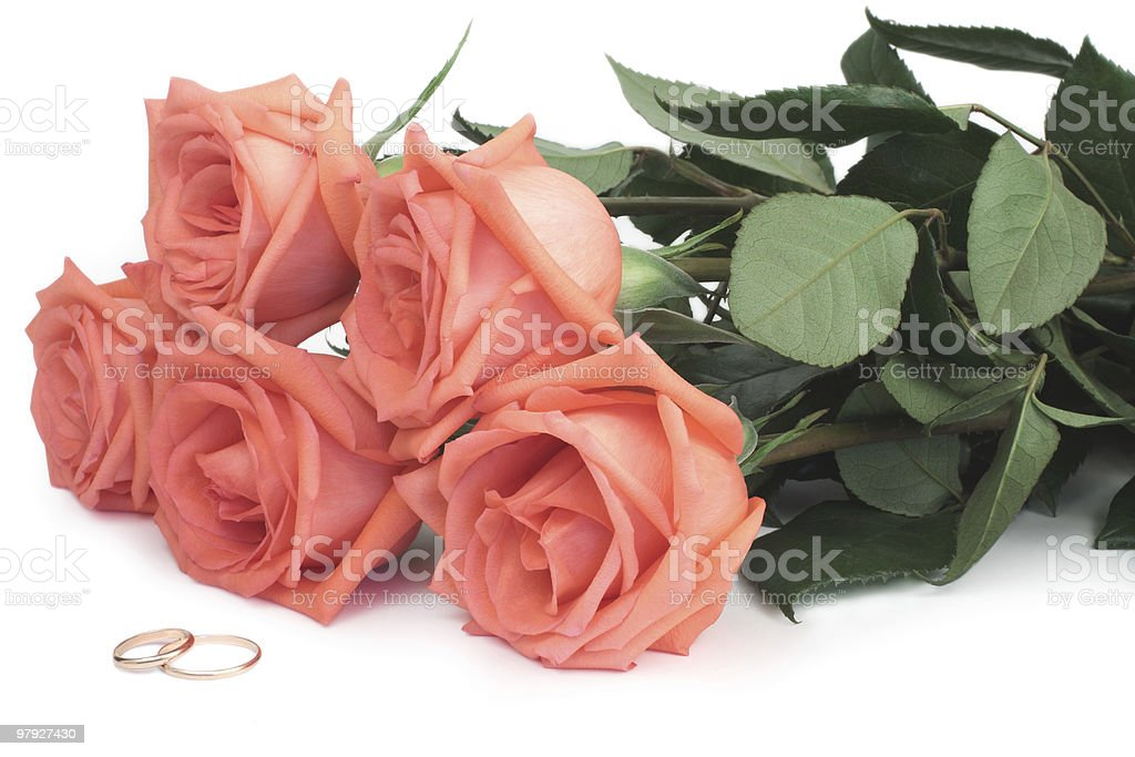 Roses and wedding rings royalty-free stock photo