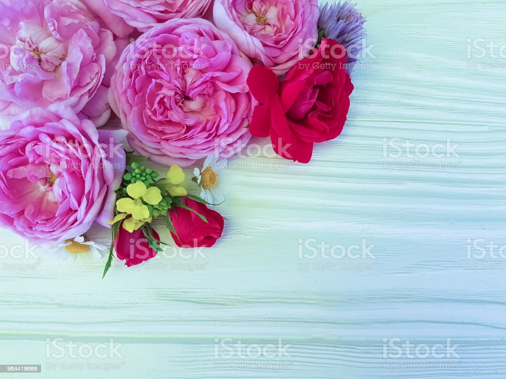 roses beautiful bouquet daisy frame on a white wooden background - Royalty-free Above Stock Photo