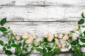 istock Roses border on wood 545986916