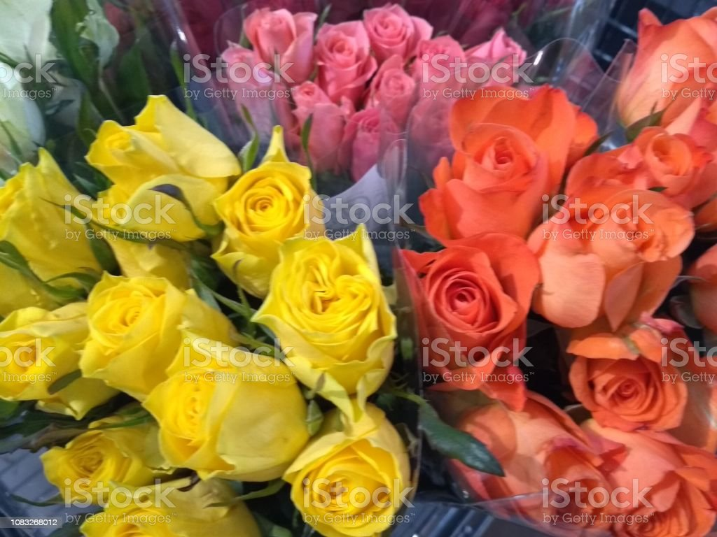 Roses Bouquet Arrangement Yellow Orange And Pink Stock Photo Download Image Now Istock