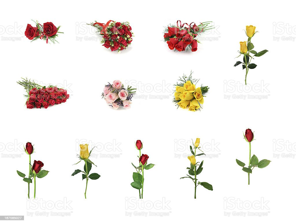 Roses bouquet design element collection in red pink yellow white stock photo